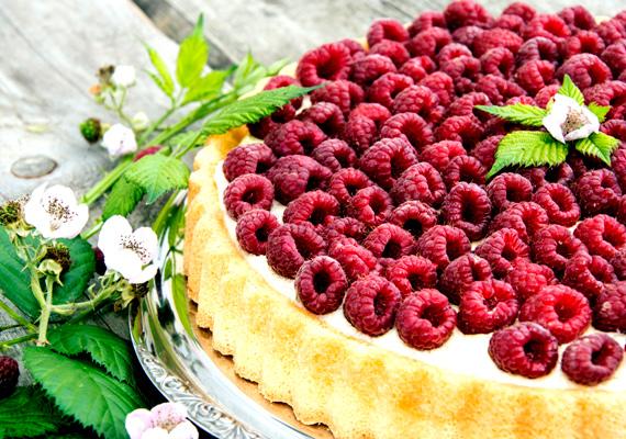 Gyümölcsös túrótortaTalán a legegyszerűbben elkészíthető torta ez, ami egyszerűsége ellenére is felveszi a versenyt a komolyabb cukrászdai édességekkel. Az ellenállhatatlan túrókrém, a friss gyümölcs és az édes tészta olyan hármast alkotnak, amivel képtelenség betelni. Ezzel a recepttel nem hibázhatsz.