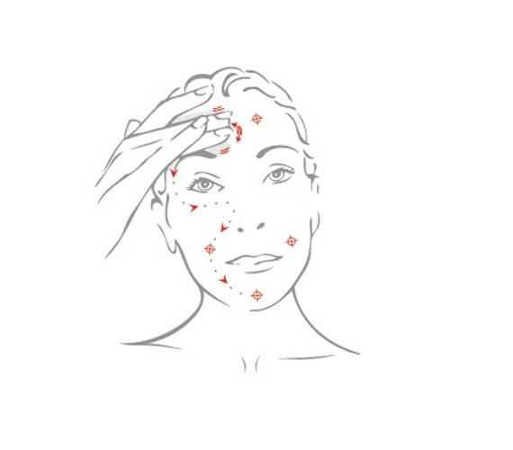 Kend be az arcod a krémmel vagy olajjal, majd a képen látott vonalak mentén finoman az ujjbegyekkel ütögesd át a bőrt többször is. Ahol kis célkereszteket látsz, ott enyhén nyomd meg. Mindig ezzel kezdd és fejezd be az arcmasszázst.