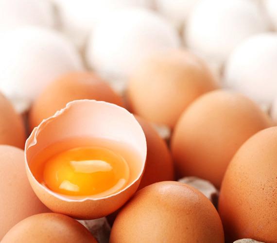 A tojássárgája jó E-vitamin-forrás, a fehérje pedig fehérjeforrás. A haj 90%-a protein, így a vegetáriánusoknál hamar jelentkezhet hajhullás, amit a tojásfogyasztással meg lehet szüntetni.
