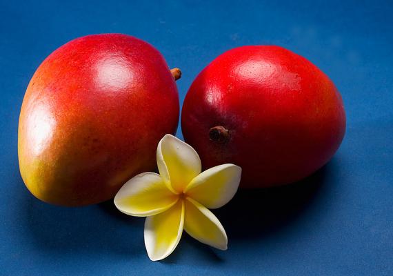 MangóNemcsak finom, de a bőrnek is nagyon jót tesz, ha néha eszel mangót. A-vitamin-tartalma olyan magas, hogy a napi szükségleted 80%-át fedezi. Mindeközben kalóriában szegény, így eheted diéta alatt is. Antioxidáns-tartalma miatt véd a szabadgyökök ellen, és óv az öregedés jeleitől is.
