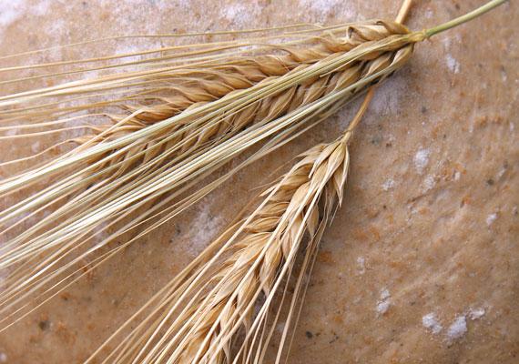 A B-vitaminok egyik legjobb forrásai a teljes kiőrlésű gabonafélék.
