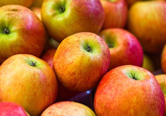 Tudományos tény, hogy a rendszeres almafogyasztás nemcsak az egészség megtartásához, de az öregedés lassításához is hozzájárul antioxidánsai miatt.