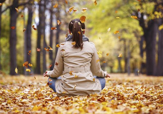 A stressz hatására is termelődnek szabadgyökök a szervezetben, amik roncsolják a kollagén kötőszöveti rostjait, illetve felgyorsítják az öregedést. A jóga nagyszerű módja a feszültség levezetésének.