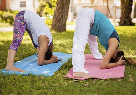 A jóga amúgy jó stresszoldó, de minden olyan ászana, amiben a fej lefelé van, fiatalító hatású, a bőrbe jutó vérnek köszönhetően. Ilyen a gyertya- vagy fejen állás, a lefelé néző kutyapóz, de a halállás is.