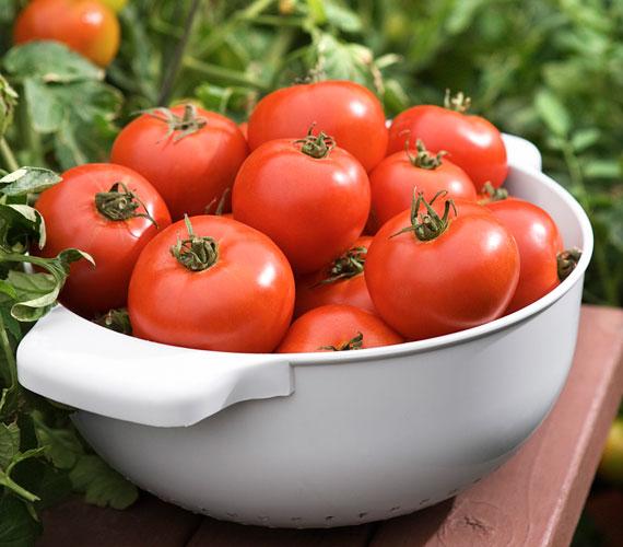 A legújabb kutatások szerint a paradicsomban található antioxidánsok a legerősebbek közé tartoznak.