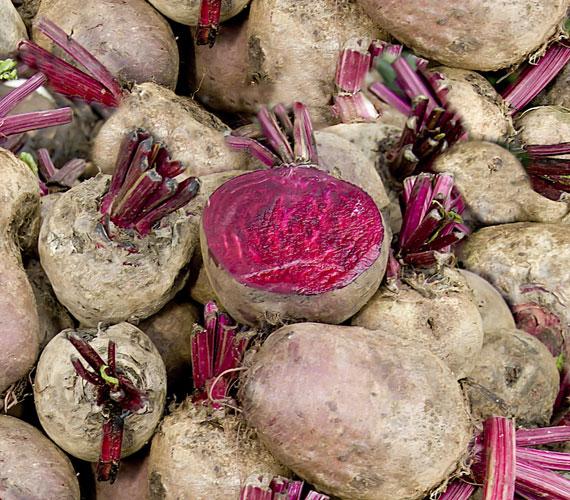 A cékla igazi női növény, színanyagai öregedésgátlóak, magas ásványianyag-tartalma van, nem mellesleg kitűnő rostforrás, így segíti a rendes emésztést. A legjobb, ha turmixba használod. A vizeletet rózsaszínre színezheti, ettől nem kell megijedni.