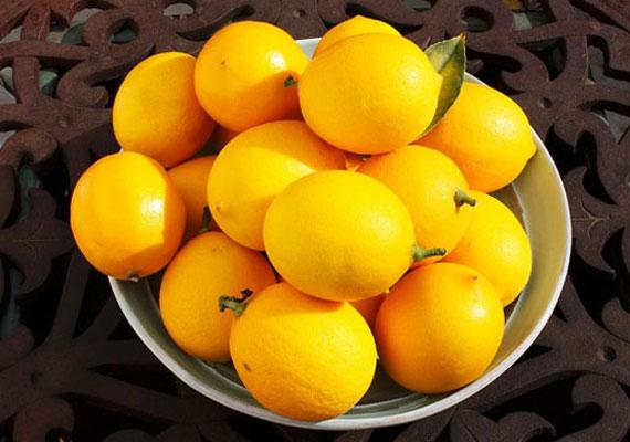 A citromban nagy mennyiségben van C-vitamin, ami serkenti a kollagéntermelést és lassítja a ráncok kialakulását, mindemellett fehérítheted vele a fogakat és a körmöt is, tudd meg, hogyan.