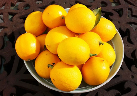 A körmök akár a körömlakktól is elszíneződhetnek, ám citrommal kifehérítheted őket, valamint ugyanezt a fehérítő hatást érvényesítheted a fogaidon is: itt olvashatsz a két módszerről bővebben.