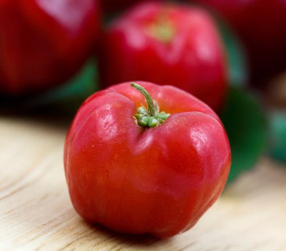 Az acerola, más néven barbadosi cseresznye rengeteg C-vitamint tartalmaz. Ez a vitamin segít regenerálódni a kollagénrostoknak. Nálunk nagyon kevés helyen kapható, de szárított vagy tablettaformában könnyen hozzájuthatsz bioboltokban.