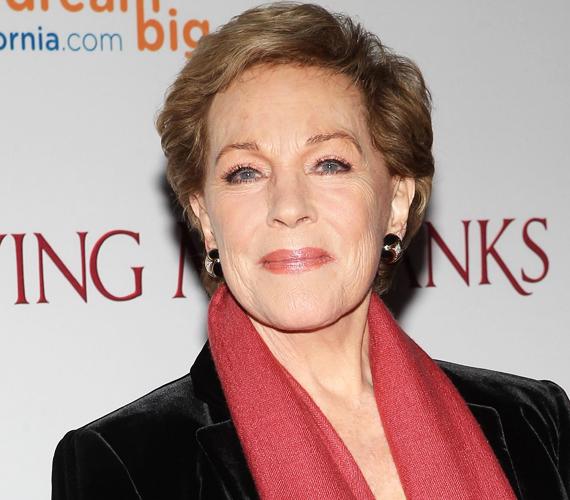 Az a báj és jókedv, amit Julie Andrewstól megszokhattunk, 79 évesen is leolvasható a színésznő arcáról, még a ráncok ellenére is. Ott az a vidám tekintet és a félmosoly, amin teljesen átüt a színésznő kedves személyisége.