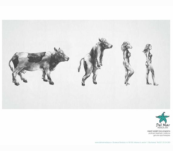 Kicsit sem bántó a bukaresti Del Mar gyógyfürdő hirdetése, ami tehénnek titulálja a nőket.