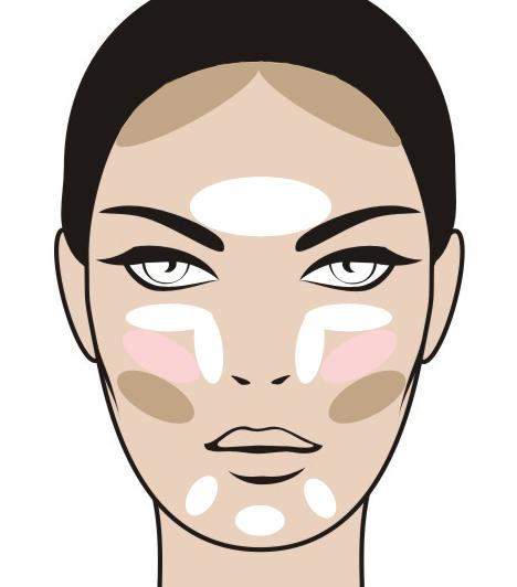 Ovális arcforma  Az ovális arcforma annyiban más, mint a kerek, hogy bár nagyon ívesek a vonásai, mégis viszonylag kiegyensúlyozottak. Ezt a legjobban az ábrán látható módon emelheted ki.