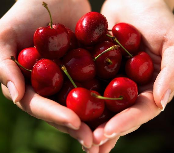 A májusi cseresznye remek hidratáló és hámlasztó. A bőrnek a napfényes időszakban is szüksége van enyhe hámlasztásra, erre tökéletesen alkalmas a cseresznye, például natúr joghurttal összekeverve.