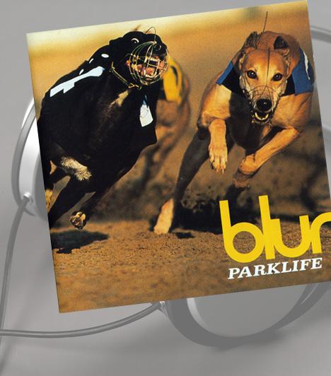 Blur: ParklifeA Parklife borítójának különlegessége, hogy a korábbi albumfotóktól eltérően - melyek túl beállítottak voltak - ehhez a lemezhez a valódi, hétköznapi Londont szerették volna megjeleníteni. A fotósok hetekig járták a várost, mígnem megtalálták a tökéletes témát: bár a zenekarról elsősorban portrét akartak készíteni a híres, azóta bezárt londoni Walthamstow agárversenyen, a fókuszba végül sokkal izgalmasabb téma került.