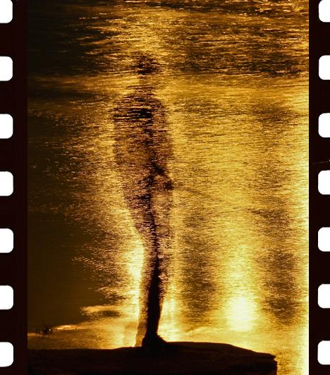 Kaszás Norbert: Horgász az aranyló folyó partjánA kép egy nyári estén készült Esztergomban. Eredetileg épületfotózásra indultam - emlékszik vissza Kaszás Norbert -, de útközben egy pergető horgászra lettem figyelmes. A képet 21 másodperces záridővel készítettem, minek következtében az ott álló horgász szinte eggyé vált a vízfelszínen tükröződő fénnyel.I. díj, Kompozíció, forma és kísérletezés kategória