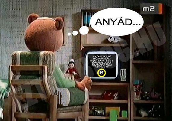 Egy egész ország akadt ki, amikor nyugdíjba küldték a régi, jól ismert TV-macit. Gyorsan mém is lett a dologból.