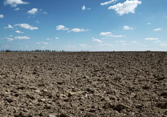 Az ellenzéki pártok hiába tiltakoztak ellene, októberben megkezdődött az állami földek elárverezése a befektetők, illetve a gazdák részére. Az állam 300 milliárd bevételt várt ettől. Olvasd el korábbi cikkünket!