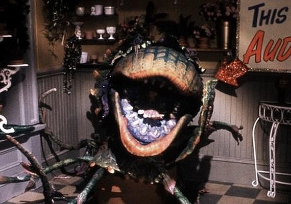 A legismertebb és egyben legfélelmetesebb húsevő növény még így is Audrey II, a Rémségek kicsiny boltja című 1986-os mozi szörnye.