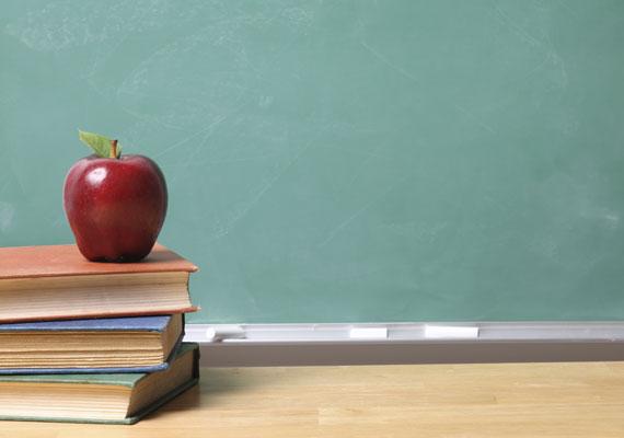 Az elmúlt években jellemző volt, hogy lehetőleg mindent központosítottak a közoktatás területén. Ennek szellemében a tankönyvek elosztása is állami feladat immár, ami okozott fennakadásokat, például amikor hónapokkal iskolakezdés után még nem volt meg minden tankönyv. Bár az idei tanév elejére ez a probléma enyhült, Hoffmann Rózsa egyik utolsó államtitkári intézkedésével a választás után előírta az iskoláknak, hogy mely kiadók könyveit választhatják a tanárok. Ez aztán ahhoz vezetett, hogy egyes hírek szerint bizonyos iskolákban megrendelték ugyan az új könyveket, azonban titokban a régi, jobb minőségűnek tartott kötetekből tanítanak.