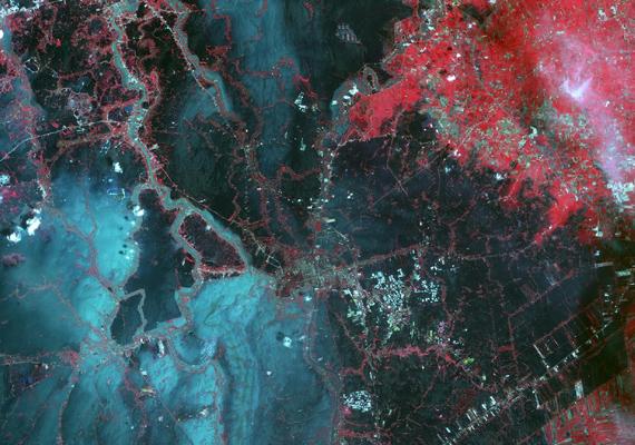 Így festett Bangkok az űrből, amikor 2011-ben megáradt az Ayutthaya-folyó. A piros szín a növényeket jelzi, a szürke az épületeket és az utakat, míg a kék és fekete a víz alatti területeket. Kattints ide a nagy felbontású képért!