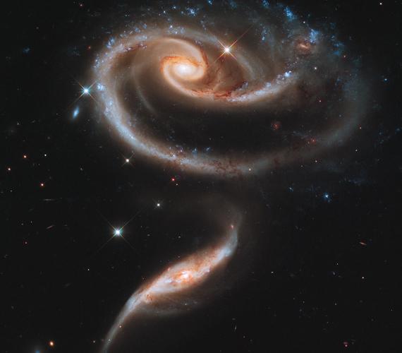 Az űrbéli rózsa sajátos látványa két nagyobb galaxis összekapcsolódásának köszönhető. A nagyobb hatással van a kisebbre, így jött létre a szár.