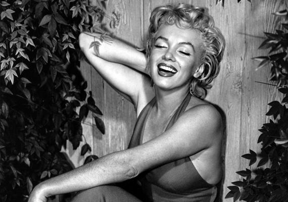 A 20. század legnagyobb nőideálja Marilyn Monroe volt, aki szépsége és kisugárzása révén férfiak tucatjait bolondította meg. Azt azonban csak kevesen tudják, hogy a szexszimbólum IQ-ja jócskán meghaladta az átlagost, azaz Marylin nemcsak rendkívül vonzó, de okos is volt.