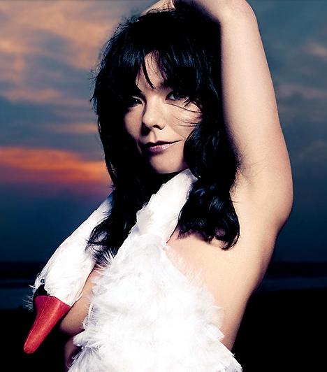 Björk (1965- )  Bár az izlandi születésű Björk Guðmundsdóttir zenei stílusa megosztja a hallgatókat, kétségkívül korának egyik legtehetségesebb énekesnője. Már kétévesen kívülről tudta a Muzsika hangja című musicalt, és mindössze ötéves volt, amikor zeneiskolába kezdett járni. Első szólólemeze, mely platinalemez lett, 12 éves korában jelent meg.