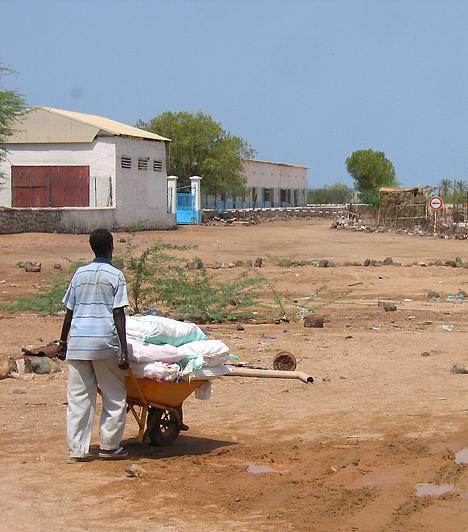 Szomália  Az ország gazdaságának alapja a mezőgazdaság - a lakosság nagyobb része nomád állattartásból él. Számukra a haszonállatok tartása a megélhetés szinte egyetlen forrása. A születéskor várható élettartam a nők esetében 49 év, a férfiaknál 46 év. Az írástudatlanság mértéke 62%.  Kapcsolódó cikk: 7 fotó, ami után máshogy látod az életed »
