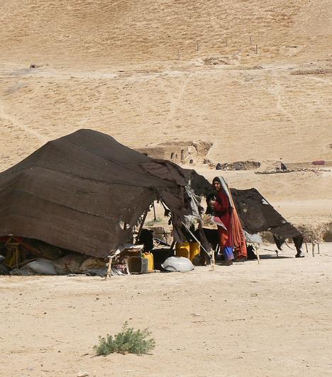 Afganisztánban a népesség 12%-a az ország határain átnyúló területen nomád-félnomád állattenyésztést folytat, az öntözött területeken és a hegyvidéki völgyekben növénytermesztés folyik. Afganisztán a világ egyik legnagyobb máktermelője: a mákból illegálisan készülő ópium a legfontosabb helyi jövedelemforrás.