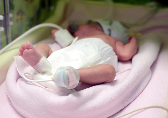 Korábbi adatok alapján csak néhány olyan eset ismert, amikor agyhalott anya gyermeke világra jött, de ők idősebb terhességi korban voltak.Ez az első eset azonban, hogy az anyát az agyhalál bekövetkezte után 92 napon át transzplantálható állapotban tartották, majd átültették a szerveit.