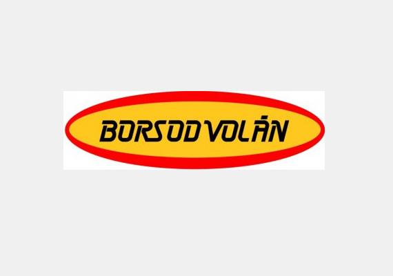 A 2010-2013-as időszakban a Borsod Volán 635 milliót költött ezen a címen.Az adózott eredmény 2010-ben 189 millió forint, 2011-ben 162 millió forint, 2012-ben 95 millió forint volt.