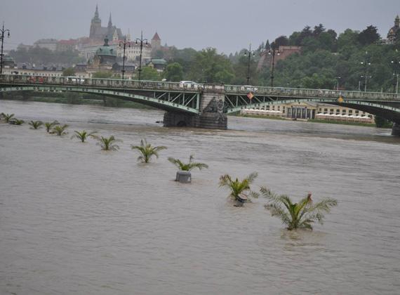 Csehországban országszerte harmadfokú árvízkészültség van érvényben. Az ausztriai Salzburburgban pedig gyalogoshídakat is lezártak.