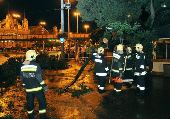 Tűzoltók egy kidőlt fánál a budapesti Szent István körúton. A munka a hét elején is folytatódott, hétfőn is több tucat esethez riasztották a szakembereket.