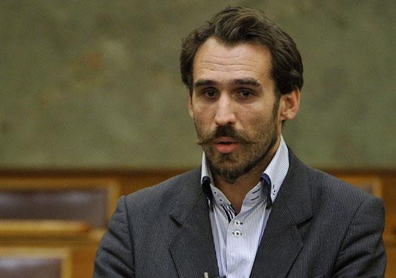 Vágó Gábor az LMP-ből kackiás bajuszával a mozgalom arca is lehetne.