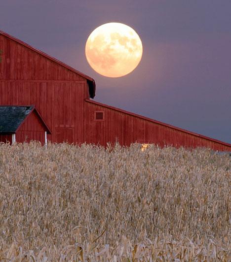 Szuperhold                         A szuperholdnak is nevezett jelenség akkor következik be, amikor az égitest perigeumba, azaz pályáján legközelebb kerül bolygónkhoz. A Hold mindössze 356 995 kilométerre halad el a Föld mellett, holott az átlagos távolság 384 402 kilométer - a Hold ilyenkor hatalmas és vörös lesz.