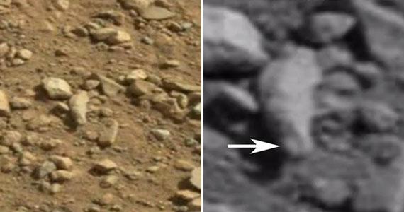 Némelyik UFO-hívő a kövek között ősi maradványokat vélt felfedezni - ez itt például sokak szerint egy mumifikálódott ujj, rajta körömmel.