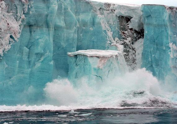 A bálnák fő táplálékául szolgáló planktonok nem képesek elég gyorsan alkalmazkodni az egyre melegedő tengervízhez, így akár ki is halhatnak.