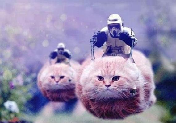 Vajon melyik Star Wars ihlette ezt a képkockát? Egy új remény, vagy az ébredő Erő?