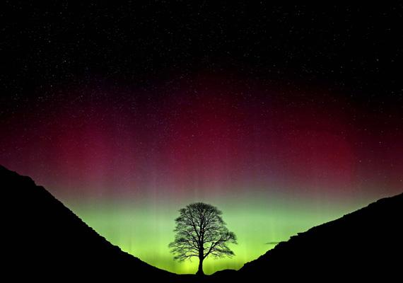 Az északi fény így világította be az eget az észak-angliai Northumberland felett. Káprázatosak ezek a színek.