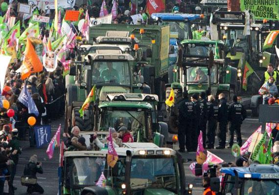 Az európai mezőgazdaság jórészt a kisbirtokokra épít, míg az amerikaira a nagybirtokosi rendszer jellemző. Állami segítség nélkül szakértők szerint képtelen lenne felvenni a versenyt az európai mezőgazdaság a jobban gépesített amerikai nagyüzemekkel. Ez pedig azt eredményezheti, hogy számos európai gazda tönkremegy. A képen is a mezőgazdaság megóvása miatt vonultak utcára az egyezmény ellen.