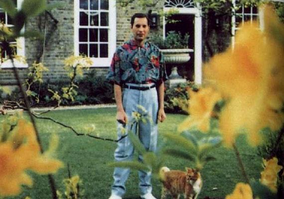 Freddy Mercury 1991-ben állt utoljára egy újságíró kamerája elé. A HIV-pozitív művész ekkor már szörnyen sovány volt, és nagyon elgyötörtnek tűnik.