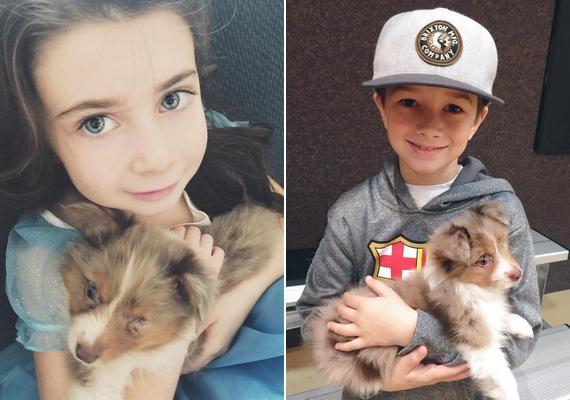 A hatéves Hallee és a nyolcéves Rex látta meg először a hasonlóságot Jordan és Shiner között, és ők hívták fel erre az apjuk figyelmét.