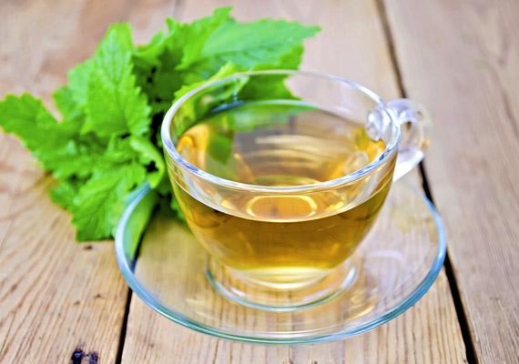 A citromfű fertőtlenítő hatású gyógynövény, ami kitisztítja az emésztőrendszert, ezzel könnyítve az emésztést és a zsírégetést. Jó hatással van az epeműködésre, és segít, ha puffadással küzdesz.
