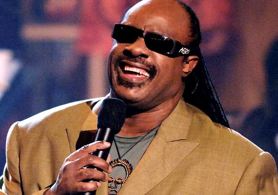 Többször elnyerte a Grammy- és az Oscar-díjat Stevie Wonder énekes, zongorista. A világhírű zenész születése után nem sokkal elvesztette a látását, valószínűleg zöldhályog miatt. Stevie Wonder jelenleg 63 éves, és a popszakma kultikus alakja.