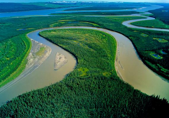 Hosszú kilométereken keresztül csak víz és növényzet.