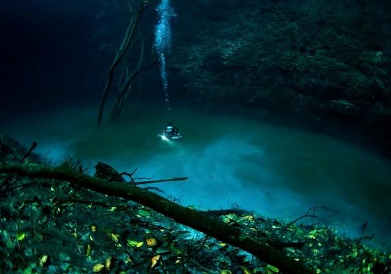 Akár egy felszíni folyó: aCenote Angelita csak abban más, hogy egy egész tenger nehezedik rá.