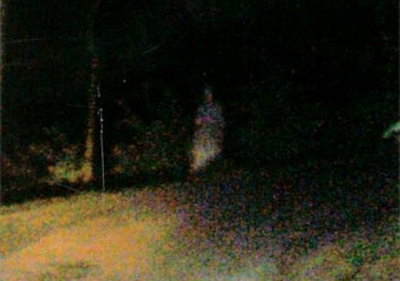 Bár nem szánt szándékkal hamisították, de ez a felvétel sem valós kísértetet ábrázol: a fotós a sötétben nem vette észre a szobrot, ami azonban a vaku magánakciójának köszönhetően megjelent a képen.