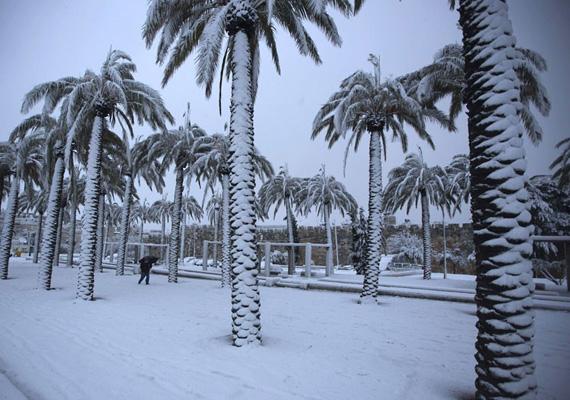 A jeruzsálemi óvárost is elérte a havazás, a férfi láthatóan alig bír közlekedni a nagy hóban.