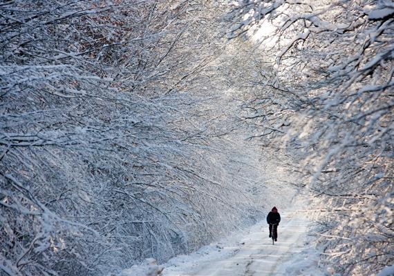 Zala megyében, Nagyrécse közelében készült a fotó, amelyen a biciklis a közel 20 centiméteres hóval dacol.