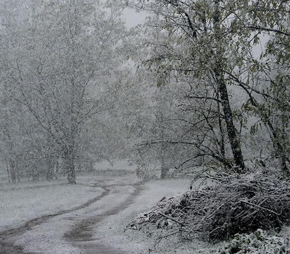 Itt van a tél, itt van újra.